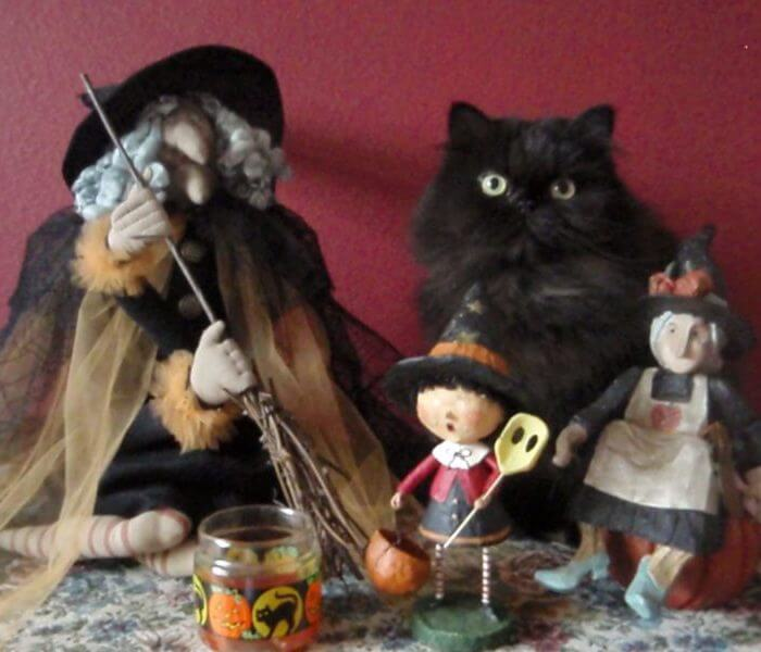 Kitty With Witches