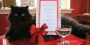 Valentine Cats Menu