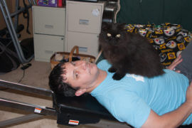 Cat as Personal Trainer