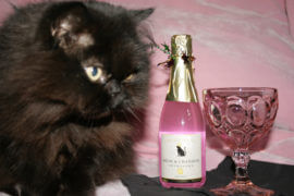 Ring in the New Year with These Gifts for Your Cat