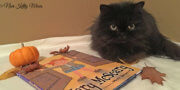 ValentineCat-and-Mary-McScary-Childrens-Book