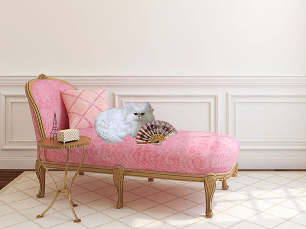 Brulee on Pink Chaise with Fan