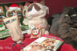 Wordy Wordless Wednesday: Tartar Sauce Goes with Christmas