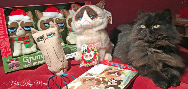 Valentine Cat with Grumpy Cat Items